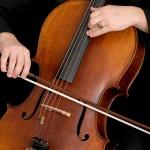 cello-2460422_1920
